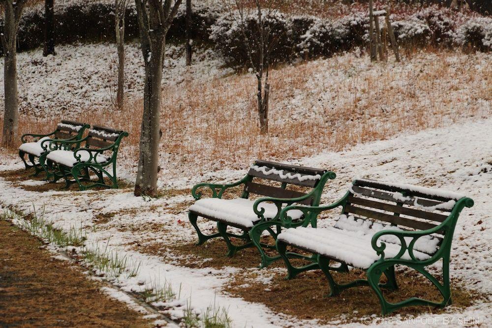 雪をかぶった公園のベンチ
