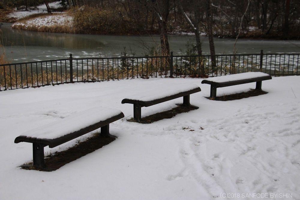 雪が積もった木製のベンチ