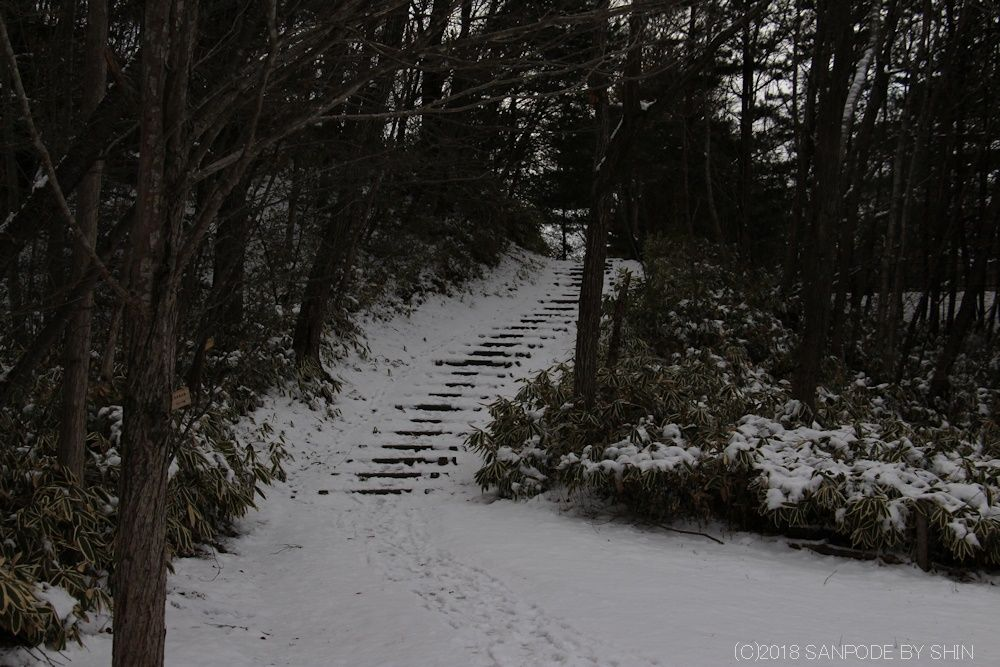 雪が積もっている擬木階段
