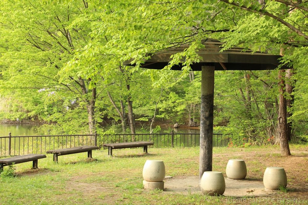 散歩道の椅子とベンチ
