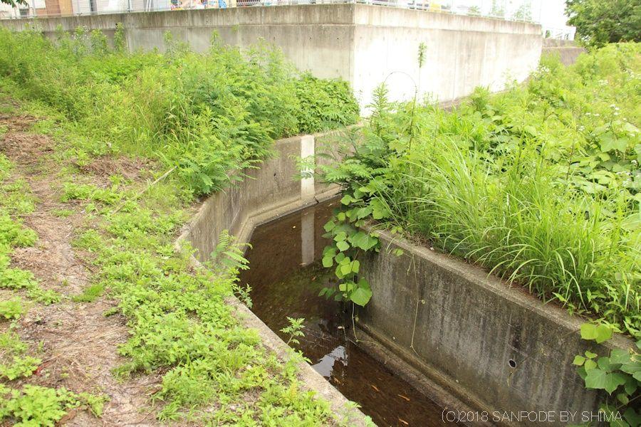 宅地脇を通る農業用水路
