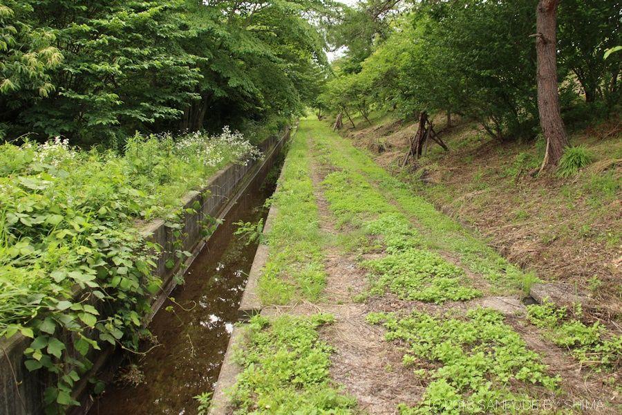 まっすぐ続く農業用水路
