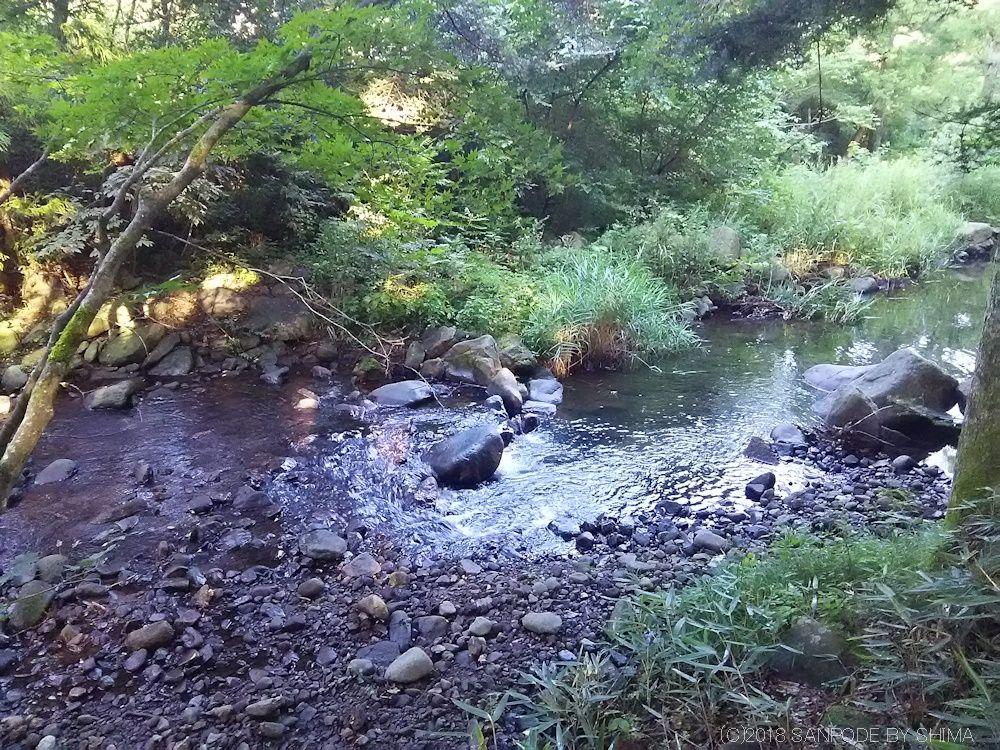 散策路の小川