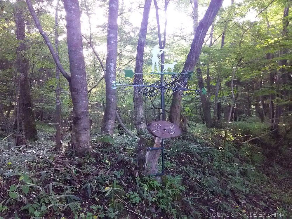 散策路の木立