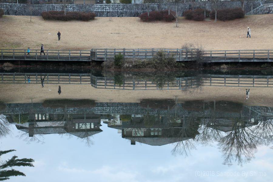 桂島緑地の水面に映る景色 対岸のデッキを親子が楽しく遊んでいる 水面に住宅の家並みが映っている